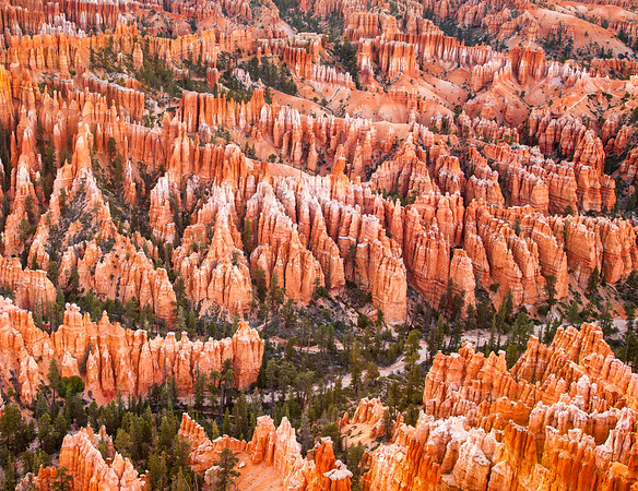 Bryce Canyon Army