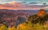 Roosevelt Point Sunset<br /> Grand Canyon National Park North Rim Arizona