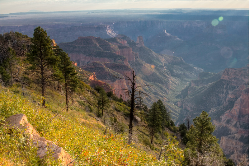 Roosevelt Point Sunrise<br /> Grand Canyon National Park North Rim Arizona