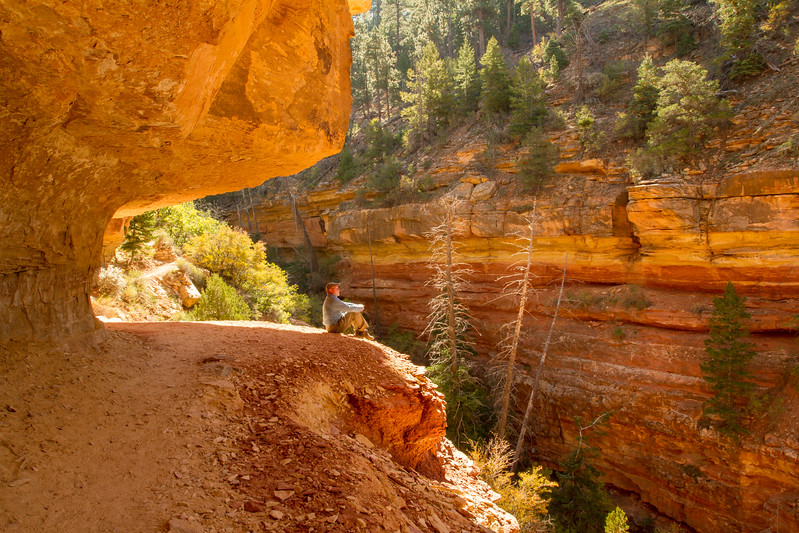 Cliff Spring Trail<br /> Grand Canyon National Park North Rim Arizona