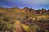 Organ Mountains Pathway, Las Cruces, NM