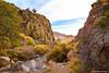 Canyon at Organ Mountains, Las Cruces, NM