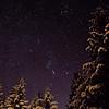 Orion Night