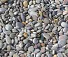 Pebbles Budleigh Salterton Sept 2006