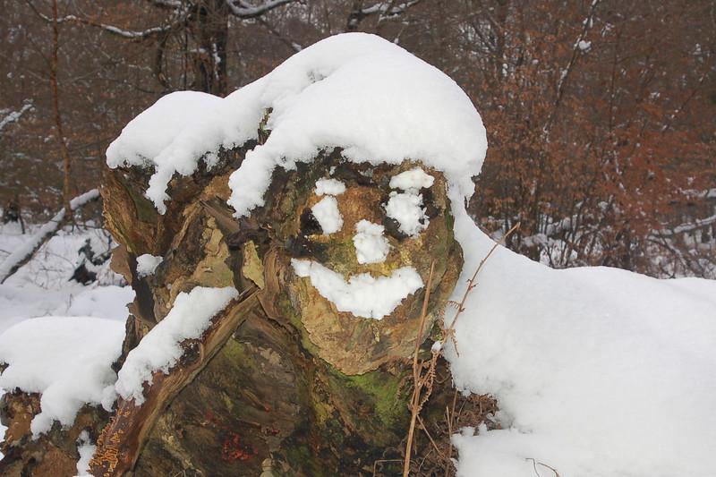 snowface_Berko_Feb09