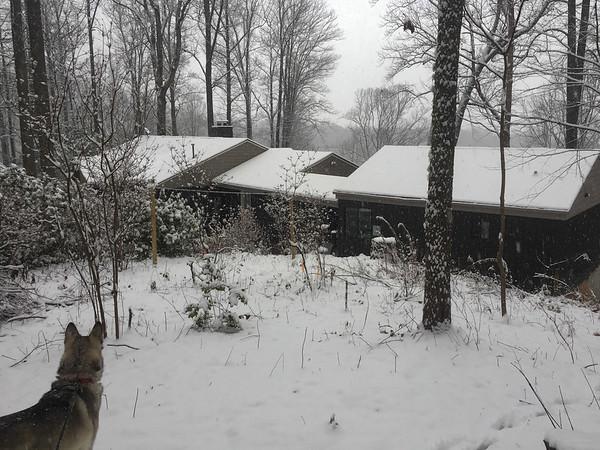 Asheville winter 2017-19