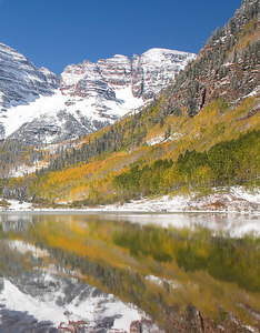 Aspen and Pine Reflections