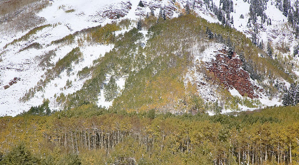 Aspens and Mountainside