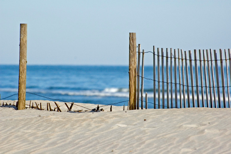 Dune Fence.