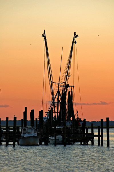 Chincoteague still harbors commercial fishing boats.