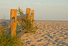 Dune Fence, 7 of 11.