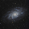 "M33 Galaxy in Triangulum<br /> November 2010<br /> 7"" Mak-Newt, AP Mach1, QSI540wsg<br /> Luminance 16 x 600, R, G, & B 8 x 300"