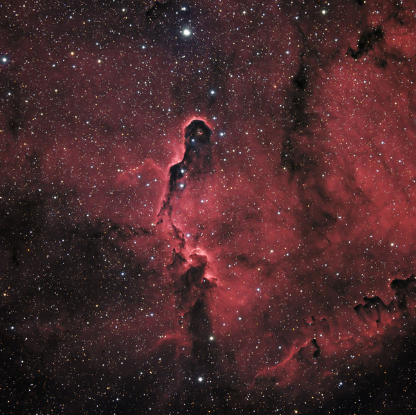 "IC 1396 Elephant Trunk Nebula<br /> August 2010<br /> 7"" Mak-Newt, AP Mach1, QSI540wsg, RGB, H-alpha (red and luminance)"