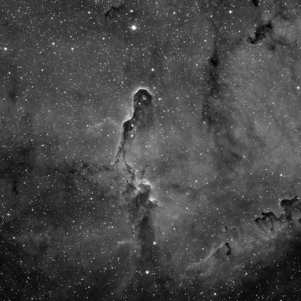 "IC 1396 Elephant Trunk Nebula<br /> August 2010<br /> 7"" Mak-Newt, AP Mach1, QSI540wsg, H-alpha 12 x 600<br /> Toning and Contrast hat tip to Warren Keller"