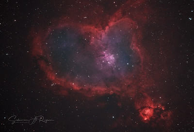 The Heart Nebula