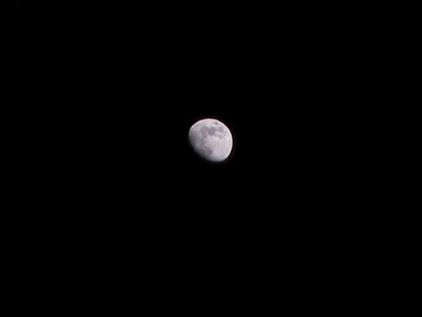 The waxing gibbous moon (161_6152)