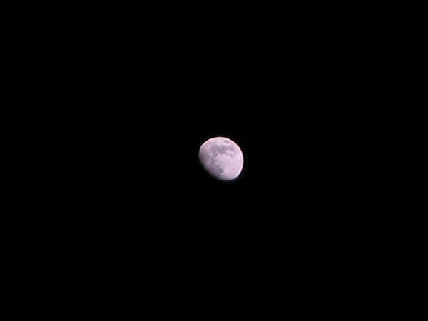 The waxing gibbous moon (161_6160)