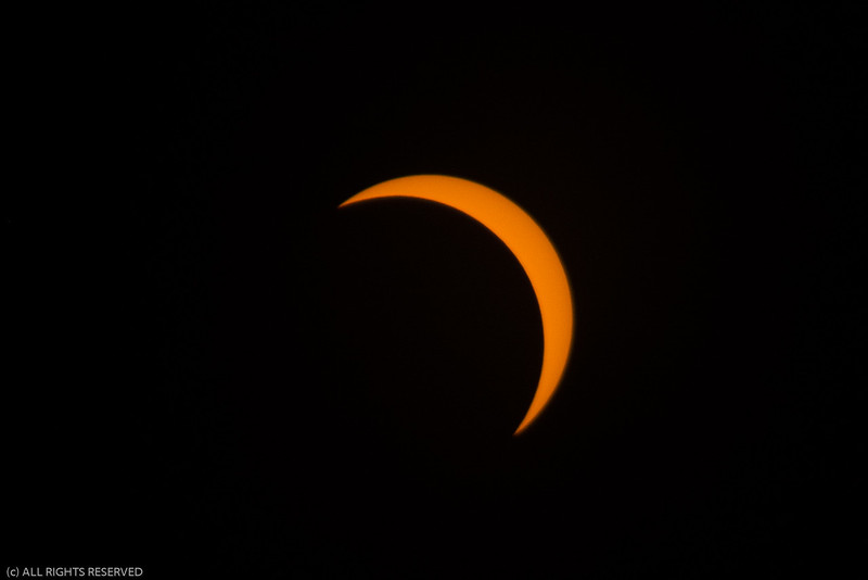 Eclipse2017-86