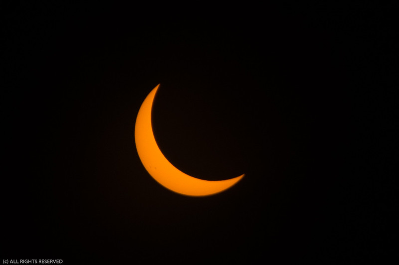 Eclipse2017-54