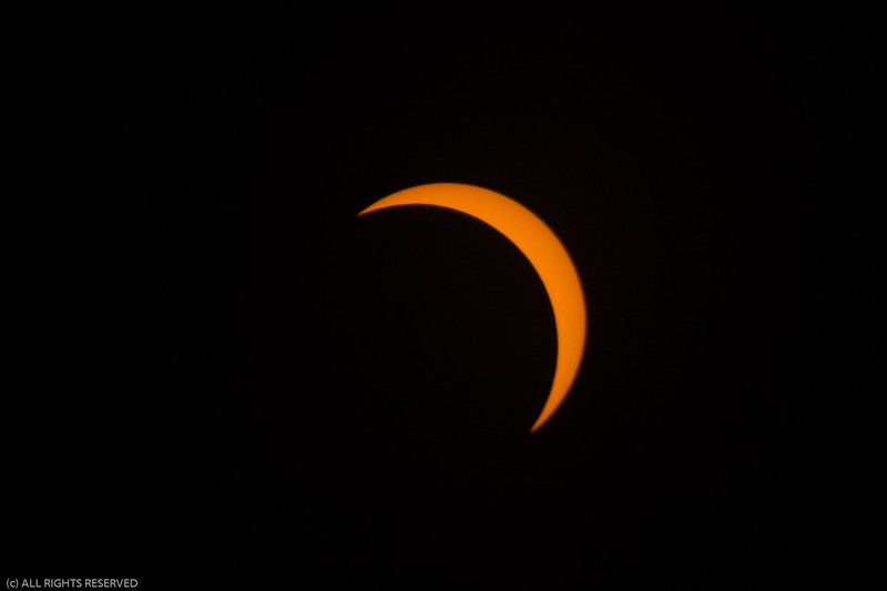 Eclipse2017-87