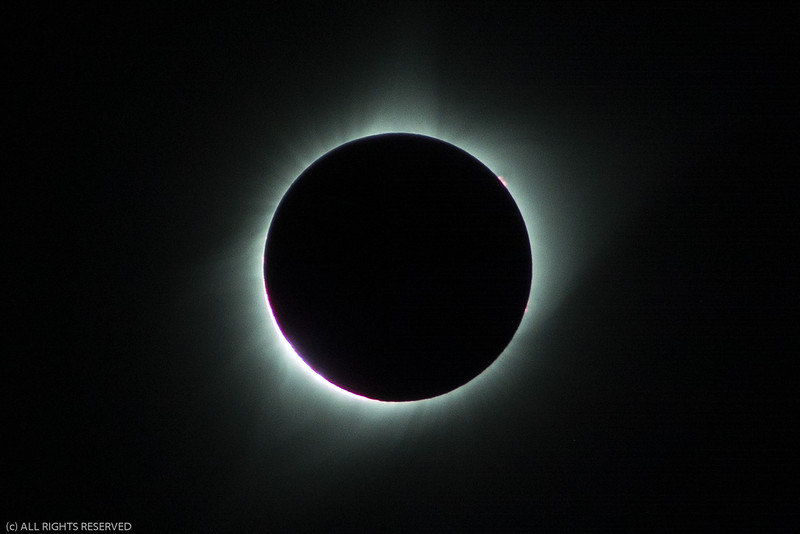 Eclipse2017-59