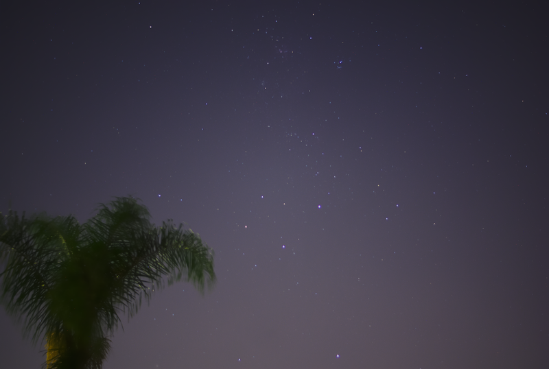 The Southern Cross and a palm tree, the view from my garden in Sydney on 2013-03-16.<br /> <br /> Sony A100 DSLR with Sony 30/2.8, 30 s, f/2.8, ISO 400.