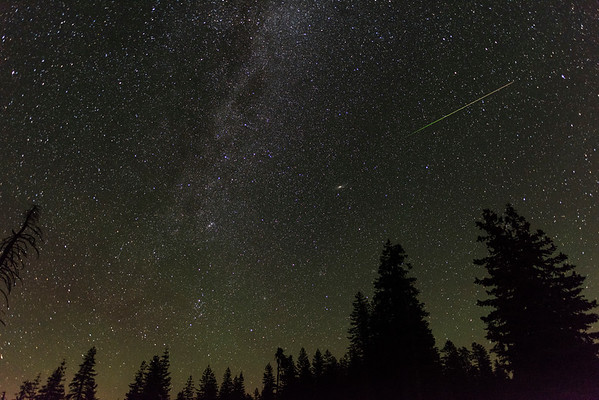 Perseid meteor over the Mendocino Forest