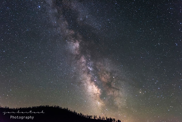 Milkyway over the Mendocino forest, California