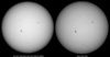 Side by side comparison of my white light photograph of the Sun as seen from Sydney on 2013-05-17 with an intensitygram from the HMI instrument of the NASA SDO satellite.<br /> <br /> Sony A100 DSLR with Sony 500/8 AF Reflex, 1/500 s, f/8, ISO 200.