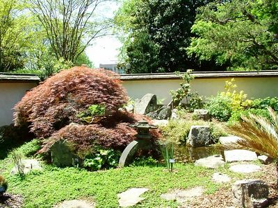 Another view of Japanese garden
