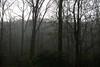Spring Storm Sky I<br /> IMG_9689