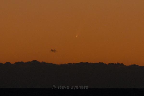 Comet McNaught (C/2006 P1)