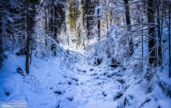 A frozen brook, Kleinwalsertal