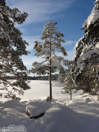 At Domarudden, Sweden.