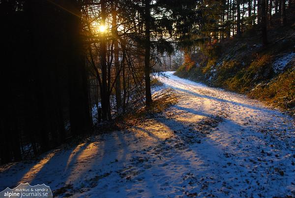 Winter walk in Schwarzwald