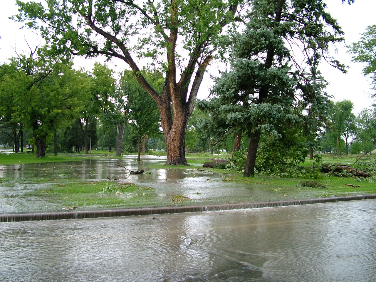 This is our park, its higher than the street...and flooded. Neat I think.