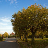 Autumn 2007 : A few early autumn photos - Brønshøj, Denmark