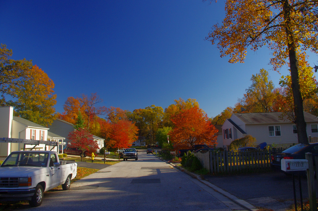 Fall on Grace Avenue. :-)