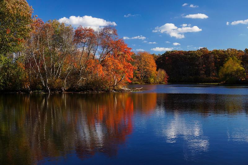 Autumn-108sm