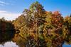 Autumn-105sm