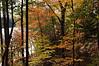 Autumn-101sm