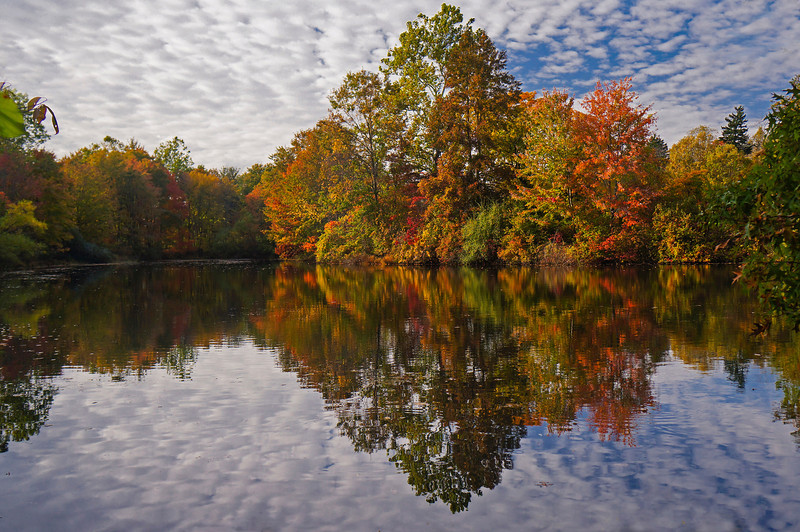 Autumn-107sm