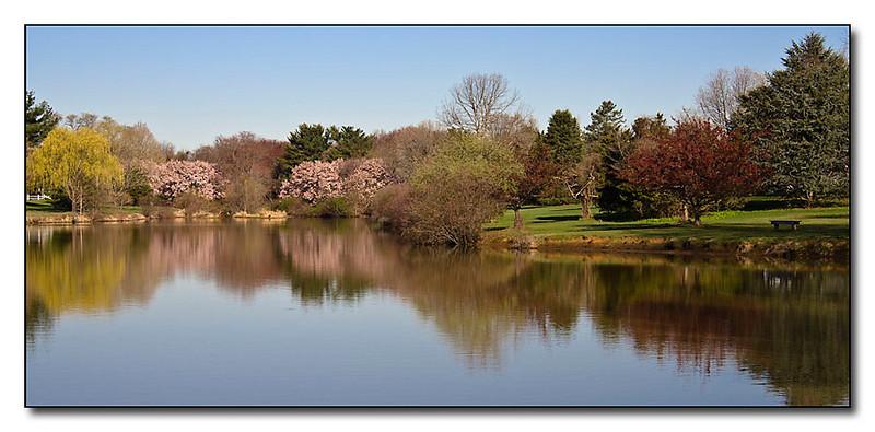 Lake View (96014404)