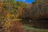 Autumn-109sm