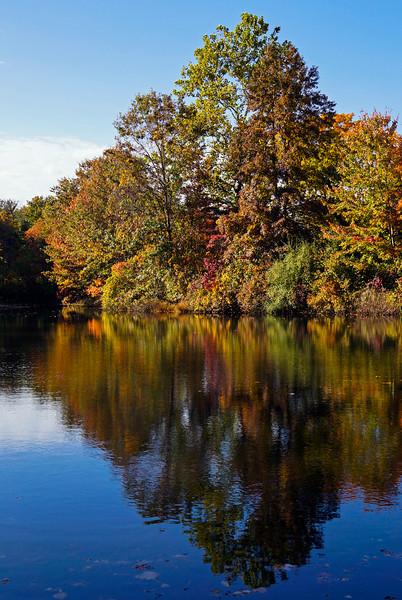 Autumn-104sm