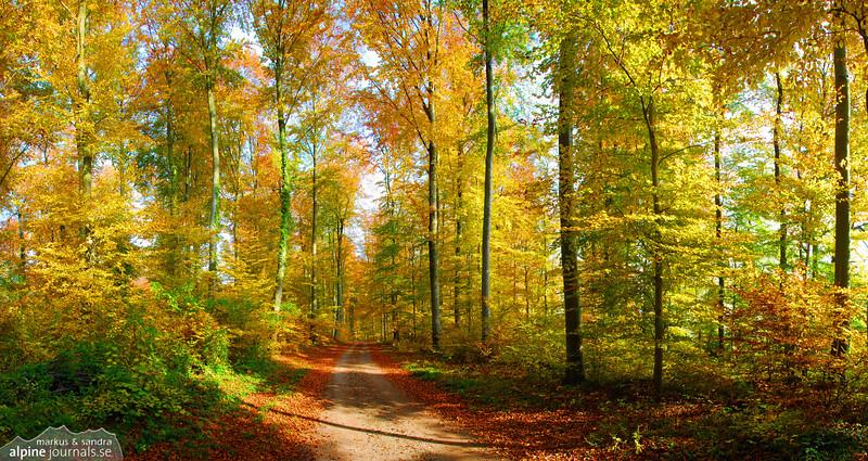Autumn in Baden-Württemberg