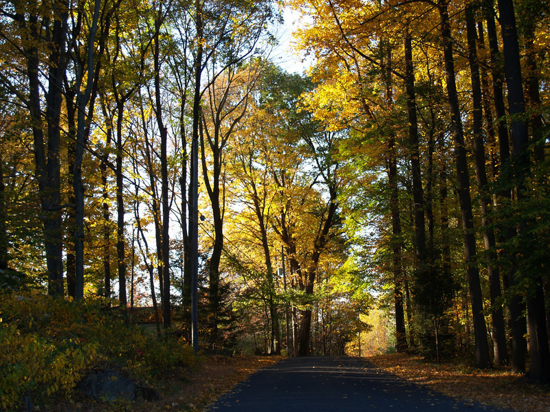 a drive on Axehandle Rd., Quakertown