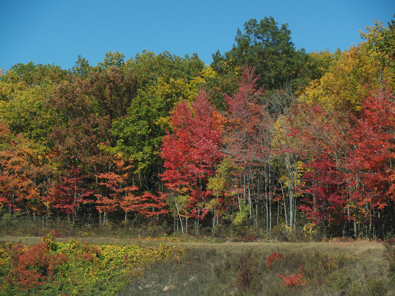 'Twas a very colorful drive.