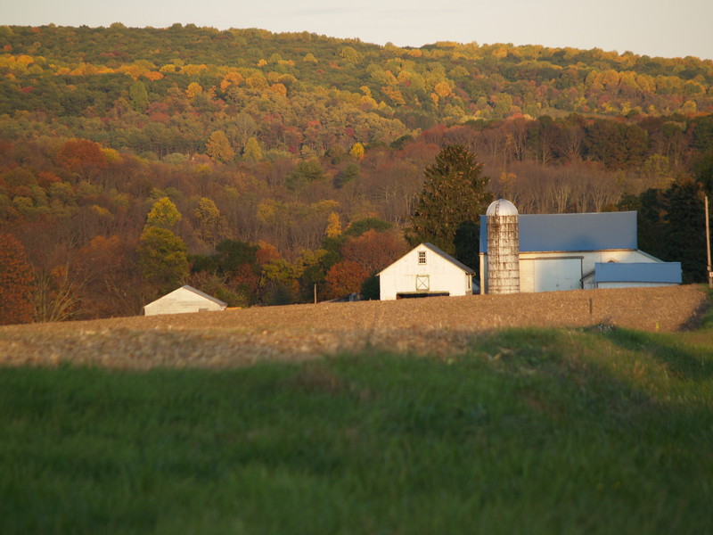 same farm as late sun hits