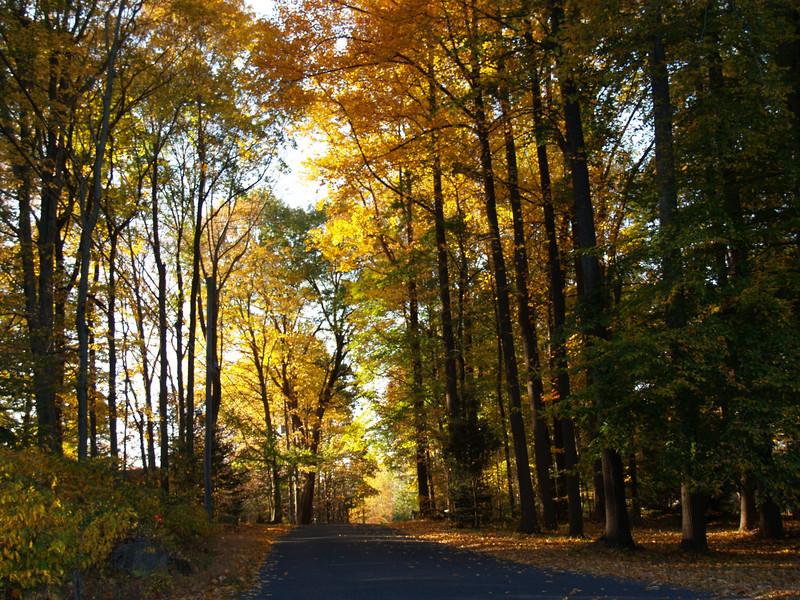 ahhh, Pennsylvania in fall!